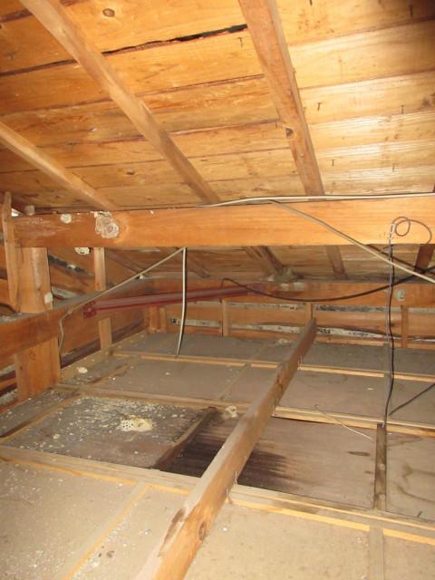 天井裏 雨漏り