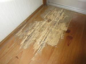床材まで蟻害を受けた状態